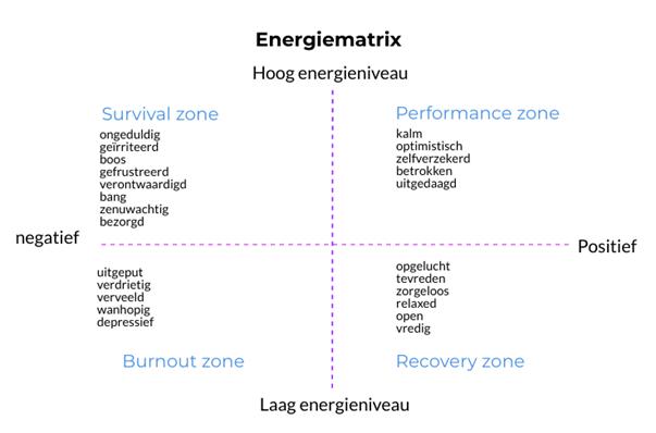 Werkgeluk in de zorg - energiematrix